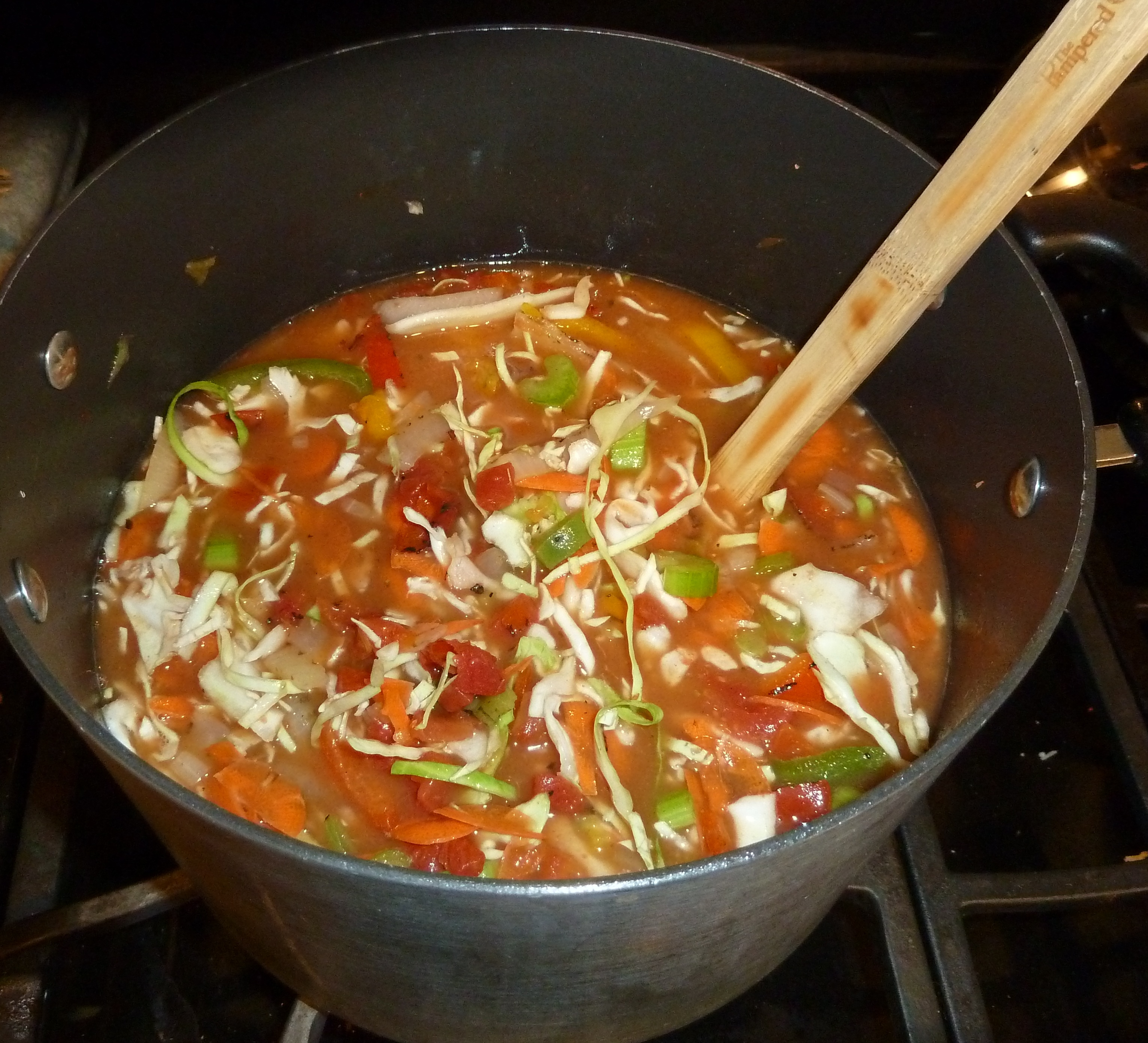 The Cabbage Soup Diet – Charlene Ross