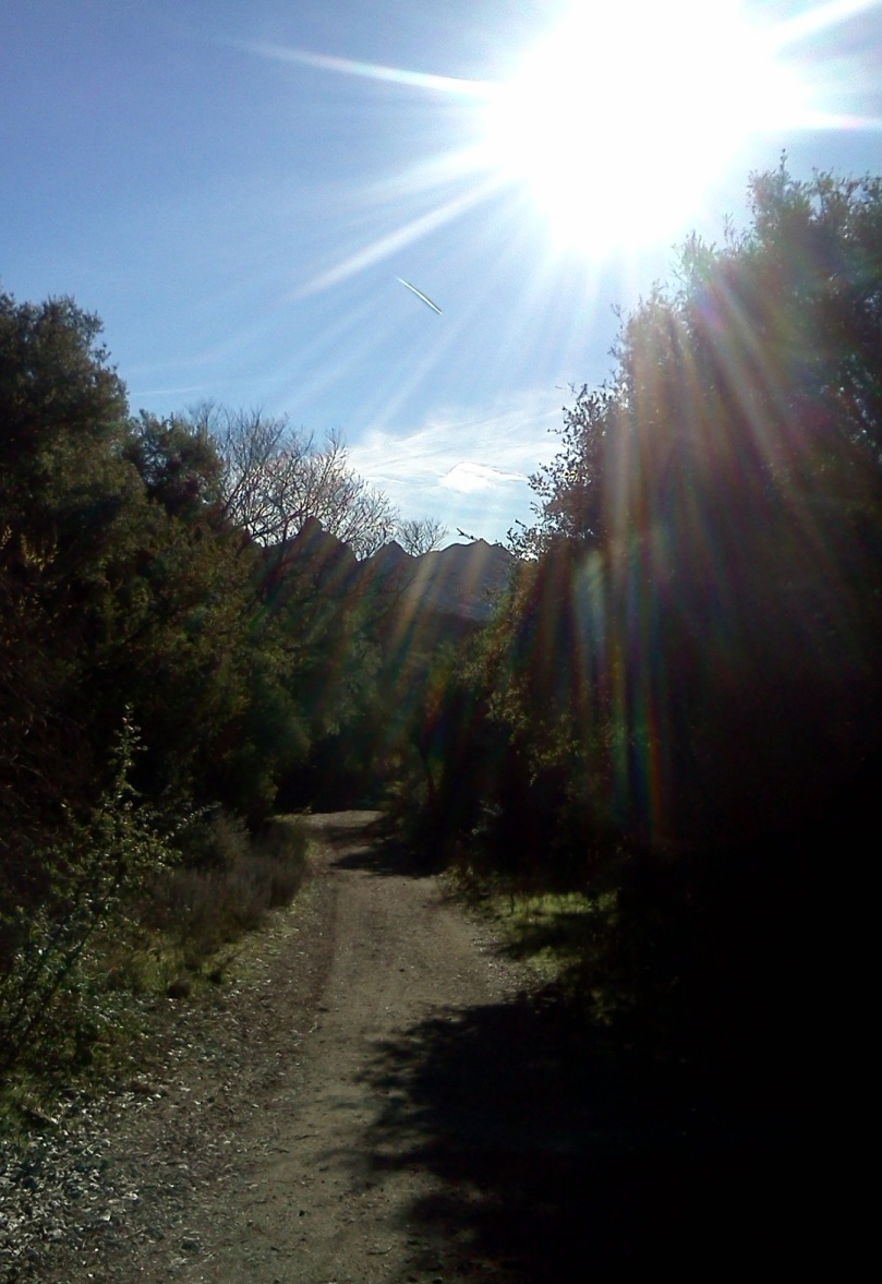 los-angeles-hiking-trail