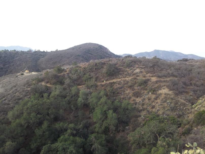 Wildwood-trails