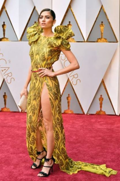 2017-academy-awards-oscars-red-carpet-blanca-blanco