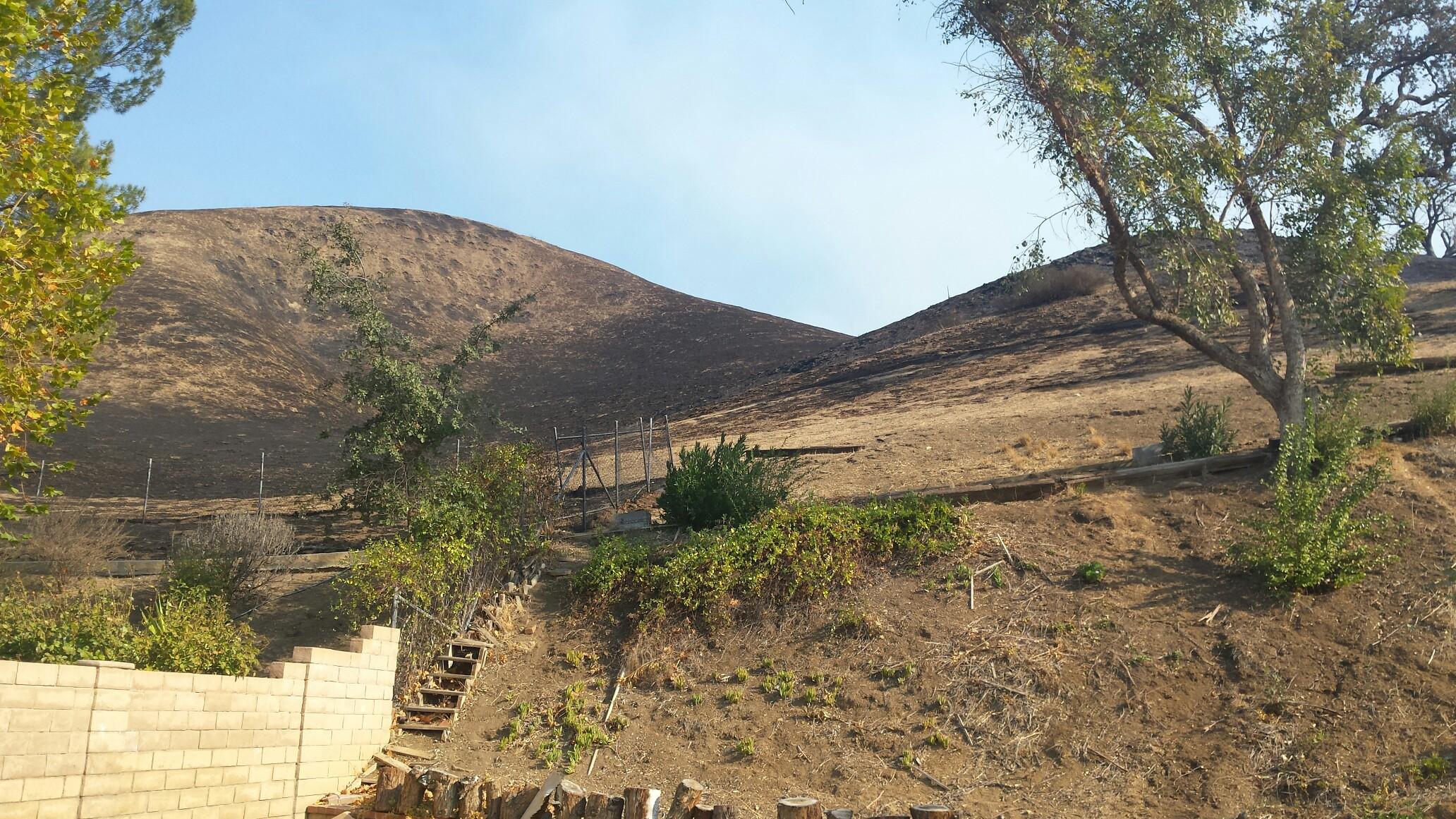 backyard burn marks after woolsey fire